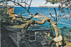 The cliffs of the South Head of Sydney harbour are seen in this view over the stone huts at the eastern end of the Crater Cove settlement.