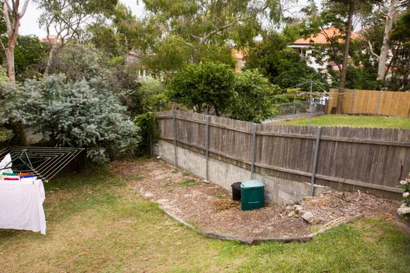An edible garden for Eastern Suburbs apartment dwellers