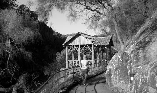 A rustic shelter on the footpath along Cataract gorge.