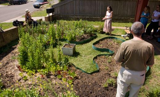 Garden is a variation on the circular garden bed design plastic