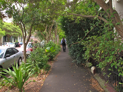 Street verges planted between established street trees makes a shady avenue for pedestrians on a hot summer's day.