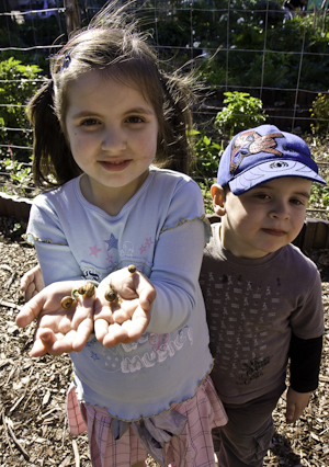 Community gardening: a fine activity for children and parents
