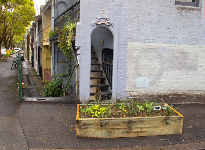 Sustainable Communities Plan for Chippendale—a submission
