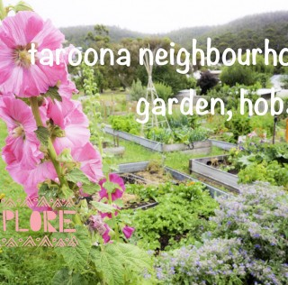 Taroona Neighbourhood Garden