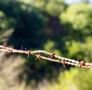 Farmer organisation allies with questionable legislation
