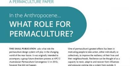 Pc&anthropocene