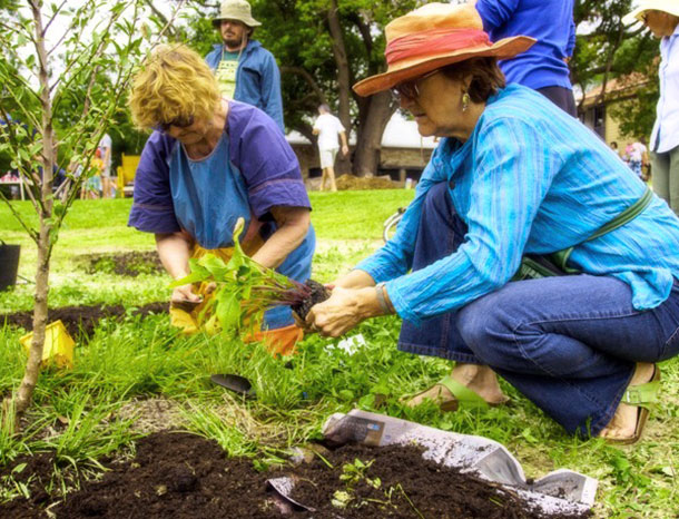 Home and community gardening supplements the family food supply and to a limited degree exercises a degree of control over the food people choose.